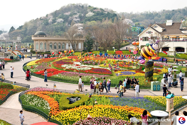 ve-may-bay-di-seoul-1