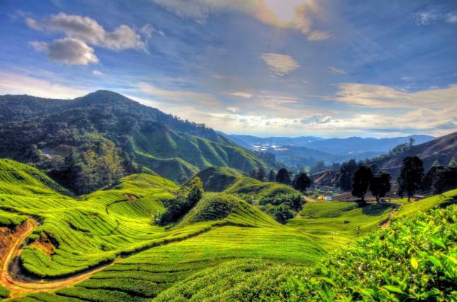 mua tour du lich malaysia gia re