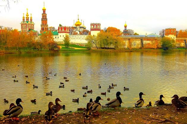Vãn cảnh mùa thu ở xứ sở bạch dương - Du lịch Nga