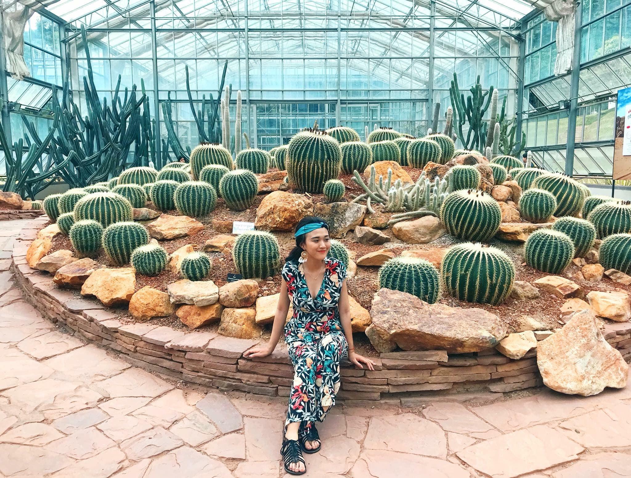 Vườn ươm xương rồng (Botanic Garden)- Vé máy bay đi Chiang Mai giá rẻ China eastern