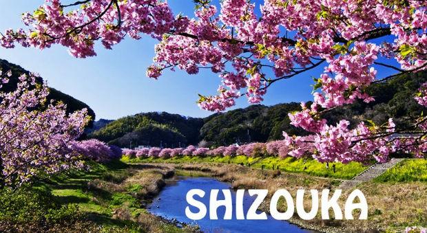 Giá vé máy bay đi Shizuoka